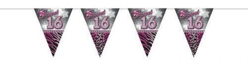 Sweet 16th Bunting Flags Party 10Mtr